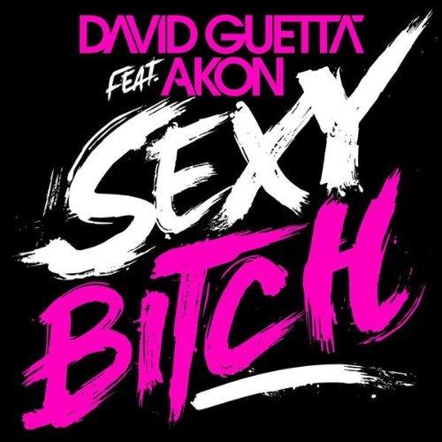 David Guetta feat Akon Sexy Bitch cover