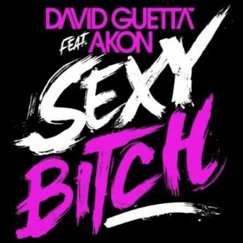 David Guetta feat Akon Sexy Bitch single